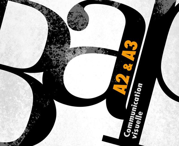 iim bourse aux projets communication visuelle 2013 - Réalisations de la BAP Communication Visuelle, 1er semestre 2013-2014