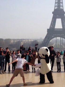 iim crazy panda 275x364 - Buzzies Award 2014 - Un panda fou à paris ! Projet vainqueur de la catégorie Manager de la communication numérique