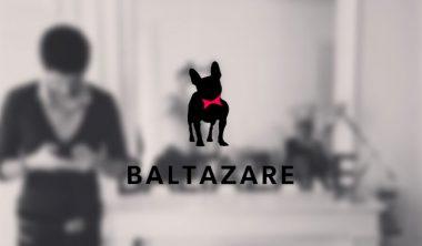 iim agence web wordpress baltazare 380x222 - Témoignage d'un étudiant en 5ème année et déjà créateur de son entreprise, l'agence web Baltazare