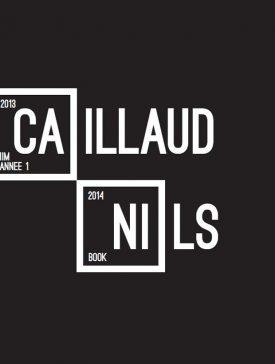 nilscaillaud1 275x364 - Nils Caillaud, Promo 2018, son portfolio créatif 2014