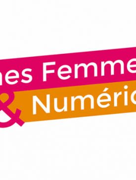 jeunes femmes et numerique 275x364 - Jeunes femmes du numérique, logo et site