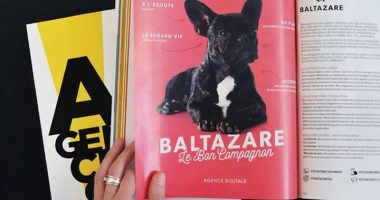 agence web baltazare 380x200 - Guillaume, promo 2014, fondateur de l'agence digitale Baltazare