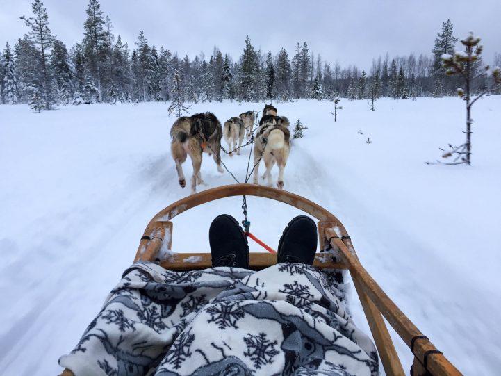 Laponie 2 e1520585903258 - Étudier en Finlande : Pierre, promo 2019, en échange à Helsinki