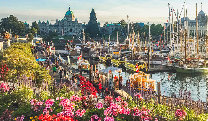 harbour victoiria canada - Étudier au Canada : Valentine, promo 2019, en échange à Vancouver