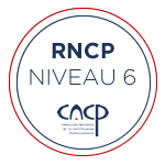 rncp niveau 6 - Bachelor Communication digitale et e-business