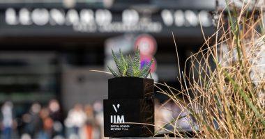 iim plante graine de vinci 380x200 - Bourses aux Projets 2020 : organiser le Gala annuel de ADA, l'association caritative du Pôle Léonard de Vinci